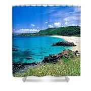 Waimea Bay Shower Curtain