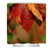 Waiting For Fall Shower Curtain