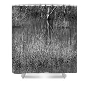 Walter Woods Park Shower Curtain