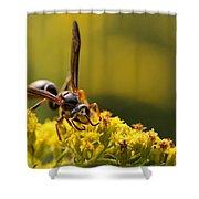 Wasp On Wildflower Shower Curtain