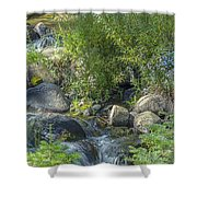 Water And Wildflowers Shower Curtain