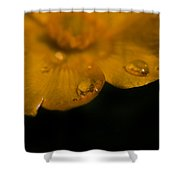 Water Diamonds  9 Shower Curtain