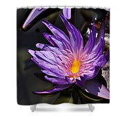 Water Floral Shower Curtain