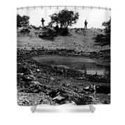 Water Hole Dead Cattle Cowboys  Drought Tohono O'odham Indian Reservation Near Sells Az 1969 Shower Curtain