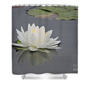 Water Lily Collection Shower Curtain