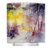 Watercolor 040908 Shower Curtain