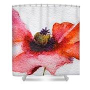 Watercolor Poppy Flower Shower Curtain