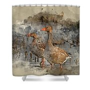 Watercolour Painting Of Beautiful Greylag Goose Anser Anser In W Shower Curtain