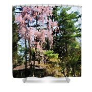 Weeping Cherry Shower Curtain