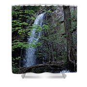 Westfield Falls Shower Curtain