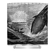 Whaling, 19th Century Shower Curtain by Granger