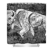 White Buffalo Shower Curtain