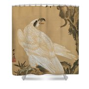 White Eagle Eyeing A Mountain Lion Shower Curtain