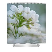 White Flower Close-up Shower Curtain