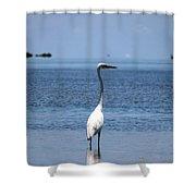 White Heron In The Keys Shower Curtain