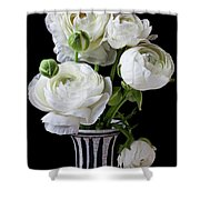 White Ranunculus In Black And White Vase Shower Curtain
