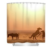 Wild Horse Sunset Shower Curtain by Wesley Aston