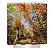 Wild River Road Cuts Through The Fall Colors Shower Curtain