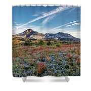 Wildflowers At Mt. St. Helen's Shower Curtain