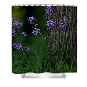 Wildflowers Shower Curtain