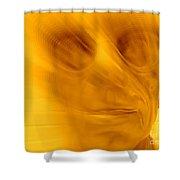 Window Pane Willie Shower Curtain