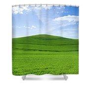 Windows Xp Shower Curtain