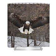 Wings Of Wonder Shower Curtain
