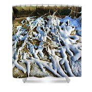 Winter Design Shower Curtain