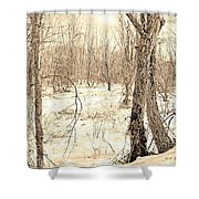Winter Scene, Montgomery County, Pennsylvania Shower Curtain