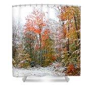 Winterfall  Shower Curtain