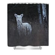 Wintery White Shower Curtain