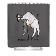 Wisdom Tooth Shower Curtain