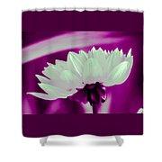 White Chrysanthemum Shower Curtain