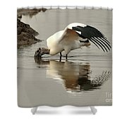 Wood Stork Winging It Shower Curtain