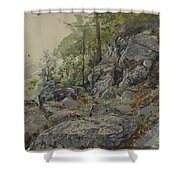Woodland Boulders Shower Curtain
