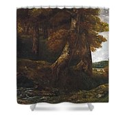 Woods Entrance Shower Curtain