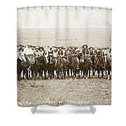 Wyoming: Cowboys, C1883 Shower Curtain