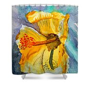 Yellow Hibiscus Shadows Shower Curtain