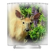 Young Buck Among The Lupin Shower Curtain