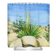 Yucca Tree Shower Curtain