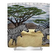 Zebra African Outback  Shower Curtain