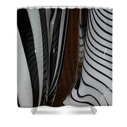 Zebra Glass Shower Curtain