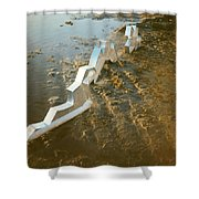 Zinc Sculptures On The Beach At Sunset Shower Curtain