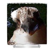 Australia - Kookaburra Up Close Shower Curtain