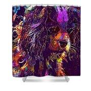 Dog Cavalier King Charles Spaniel  Shower Curtain