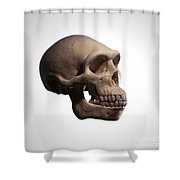 Homo Erectus Shower Curtain