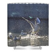 Lisbon Portugal Shower Curtain