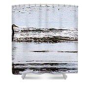 Sea Birds Shower Curtain