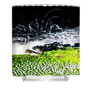 The Adobe Shower Curtain