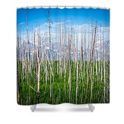 Vast Scenic Montana State Landscapes And Nature Shower Curtain